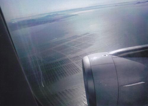 有明海に広がる海苔棚。(写真は35ミリカメラで撮影)