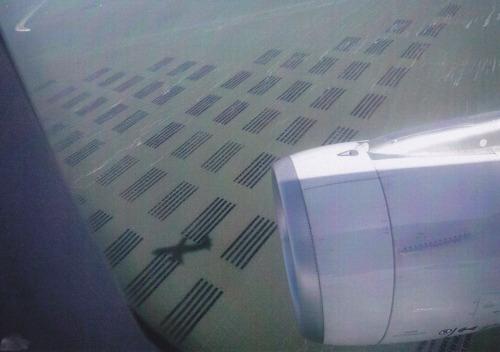 着陸前、かなり低空飛行に!棚というか海苔そのものみたいだ。