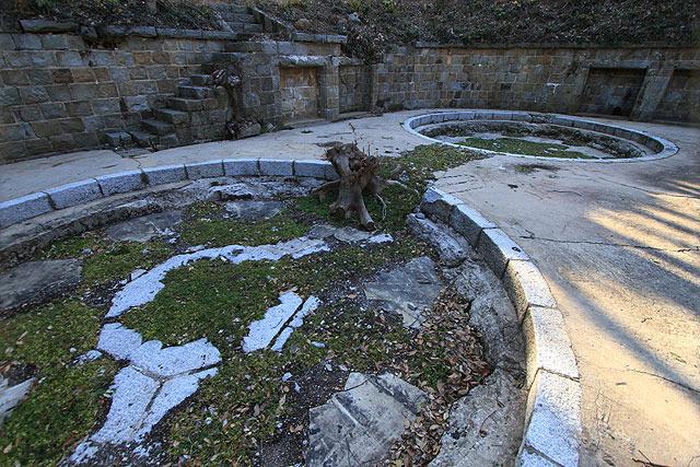 砲台の跡には植物が生えている。