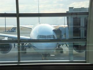こんなでかい飛行機に乗っても行くところ決まってない…