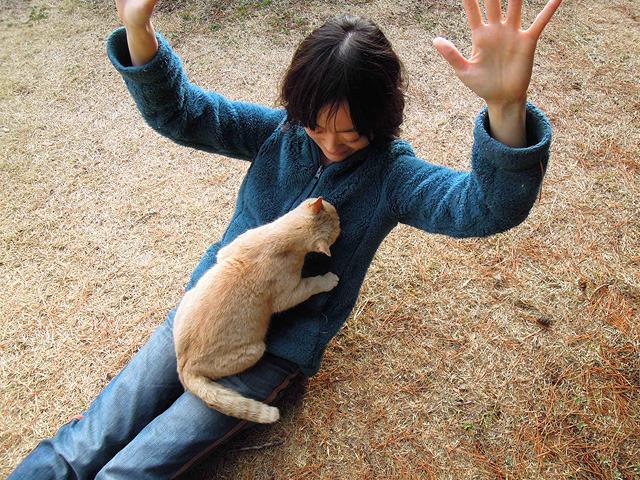 わーい、猫が貼り付いてくる!