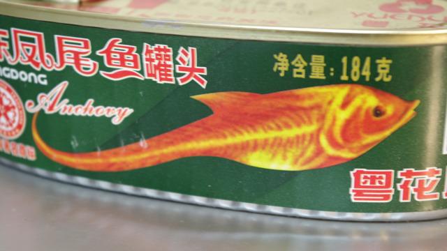 おまえは何の魚じゃ?
