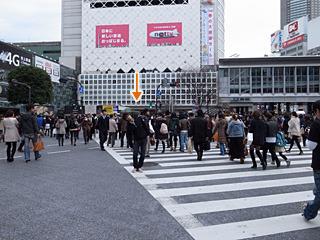 左右に振る。振っているところを外国人に写真撮られた。