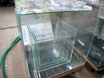 ガラスのみで組み立てられた水槽。清潔で繊細な印象。