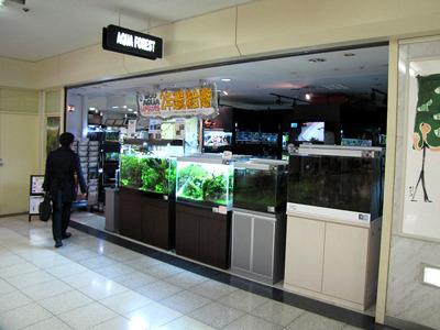 「歌舞伎町」と「地下」という単語から癒しの空間は想像しにくいが、実際とびっきりのオアシスがある。