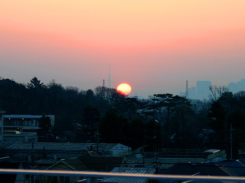 そこへ日の出。本物、ご来臨。「誰が太陽やて?」