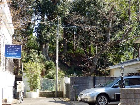 立入禁止部分を公園の外から見ると、住宅地の中に手つかずの城跡が残る