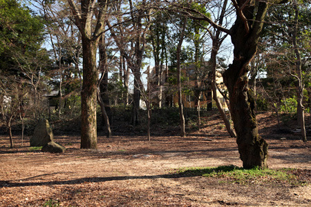 奥を横切っている盛り土が土塁の跡