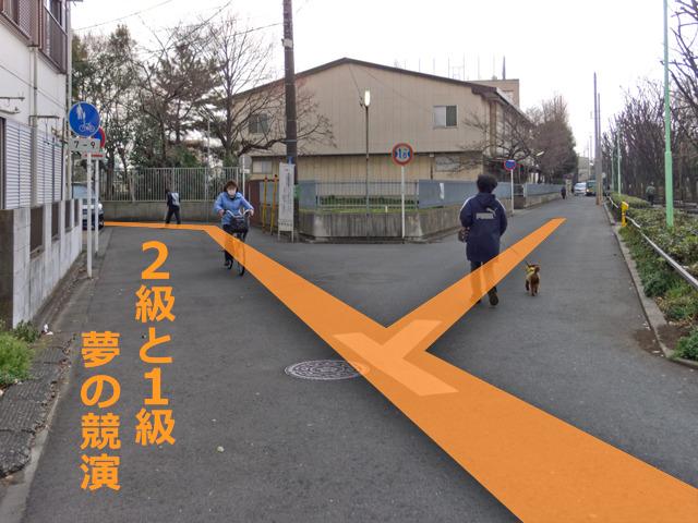 これはすばらしい!鋭角の敷地が生み出した変則的な丁字路に、L字が連続!