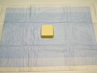 高吸水を謳っていたLサイズのシート。青いのがちょっとイヤかも。