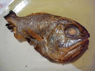 沼津ではアブラゴソと呼ばれているヒウチダイ。大きな頭と口がいかにも深海魚!
