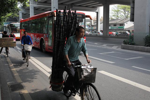 こちらもほとんど骨董の域に達しつつある自転車に大量のサトウキビをオン。正面衝突したらサトウキビが全部相手に突き刺さる。