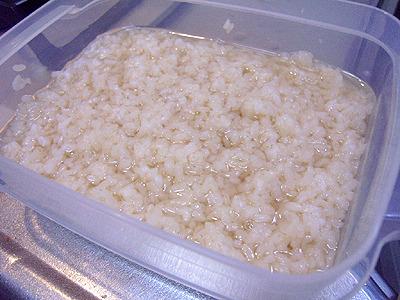 発酵開始から24時間程度。米が溶けて液体状になる。既にかなり甘い。