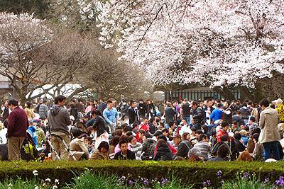 新宿門近くの広場は人口密度高いです。