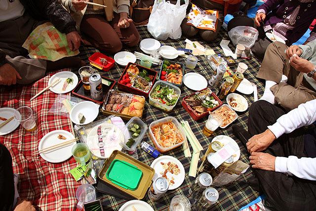 お弁当が綺麗だったのでお願いして写真を撮らせてもらったよ。