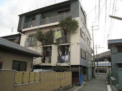 当時住んでたとこ。建物内に樹を2本飲み込んでいる、ビジュアル的にもすごい建物だった