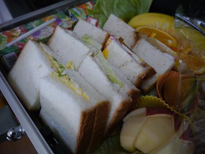 サンドイッチは「かさ」が高くて入らなかったので半分に切って斜めに配置した。