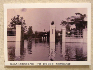 昭和33年の大洪水。小菅刑務所(現東京拘置所)前の写真