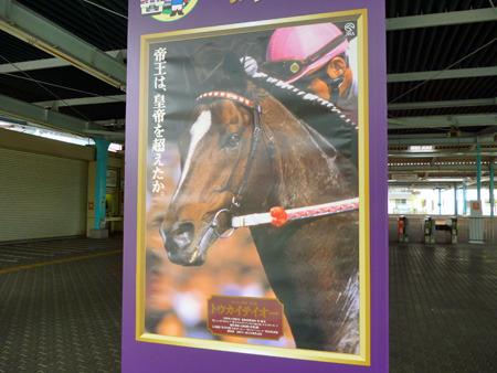 馬の写真がどうしてこんなにかっこいいのか