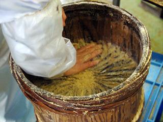 一樽に千匹以上のイワシを詰め込んでいく。おばちゃんがちゃんと匹数を数えていたのに驚いた。