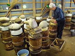 しっかりと重石をするのだが、発酵の力で石がごろんと落ちたりするらしい。地味な賽ノ河原状態。