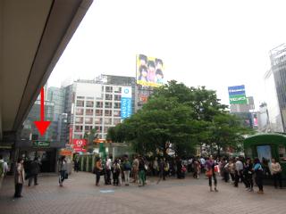 向かったのは渋谷東急のフードショーと