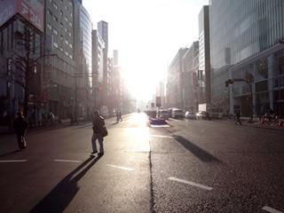 新宿は新宿通りが東に通っているので意外に太陽が見えるかも