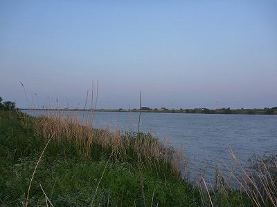 日本における主な生息水域は利根川水系。