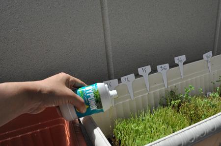 液体肥料投入。