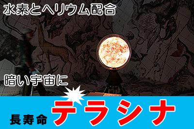 橋本典久さんの個展で展示されていたパノラマボールビジョン。