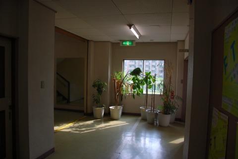 ふつうの廊下に見えるけど、
