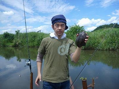 カミツキガメの画像 p1_30