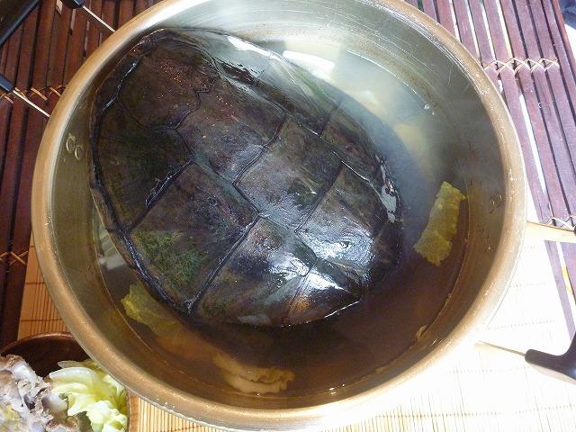 カミツキ鍋。手持ちの土鍋では収まりきらず、近所から大鍋を借りてきた。