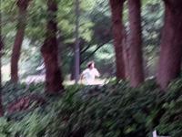 走り)滝のうらを走る
