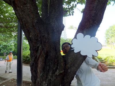 木の「股」からおならを出す。だいぶわからなくなってきているが、楽しい