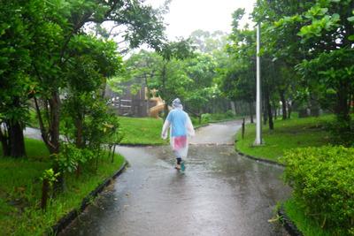 当たり前ですが豪雨なので公園には誰もいません