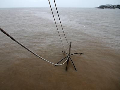 8畳くらいはありそうな網をそっと沈める。