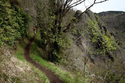 谷が多いのでこういう道を上ったり下ったり