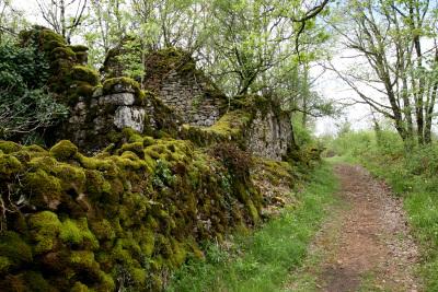 苔むした石垣や石壁が美しい