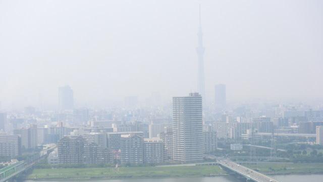 船堀タワーからの東京スカイツリー