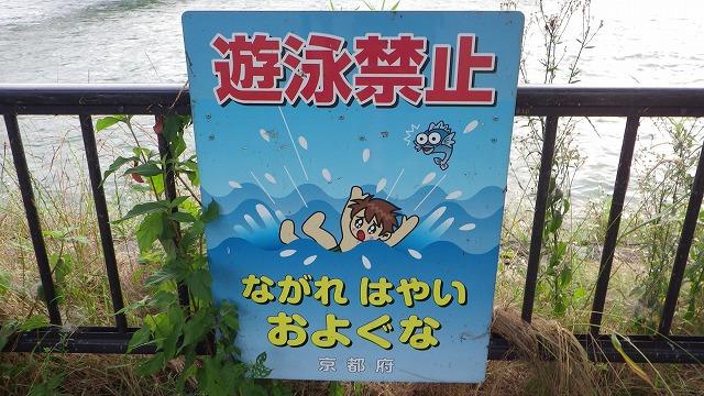 確かにこの流れで泳いだら危ないわな。