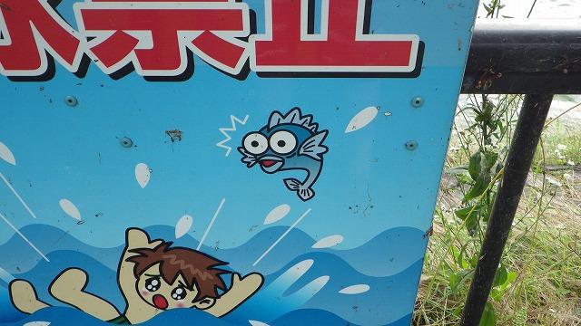 この魚はきっと溺れる少年を心配しているのではなく、「エェーッ!この程度の流れで溺れちゃうのかいぃ!?」とマスオさんチックな声で人類を嘲っているに違いない。嫌味な奴だ。