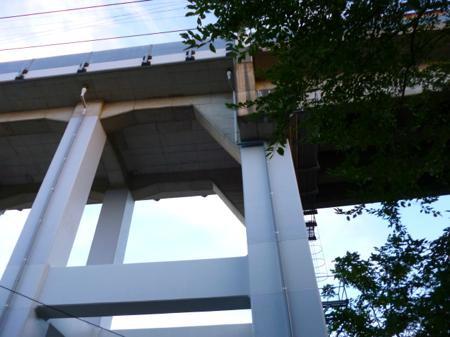 しばらく歩くと多摩センター方面に行く高架をくぐる