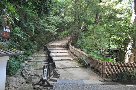 彦根城への入り口、トトロ出そう。