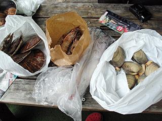 ホタテにエビにイカに貝。海鮮バーベキューの王道といえるセレクトですね。