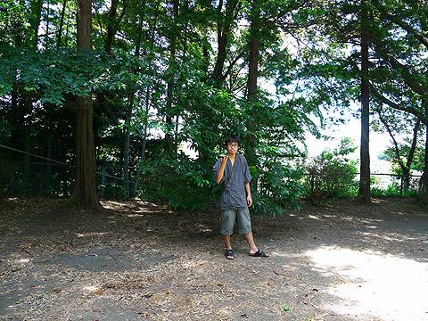 静かな里山ではなく、近所の公園で撮影しています