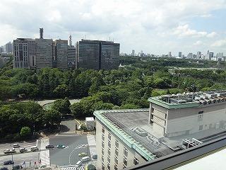 緑豊かな窓からの景色