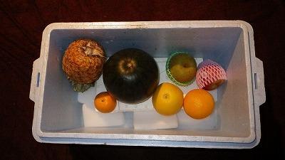 用意したのはスイカ、パイナップル、梨、リンゴ、そしてグレープフルーツやオレンジなどの柑橘類。