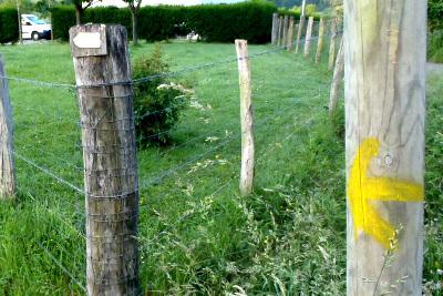 黄色い矢印をたどって行く