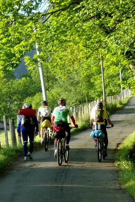 自転車で行く人も多い